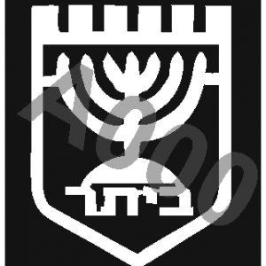 קעקוע ביתר ירושלים | קעקוע זמני | שבלונה דגם 152