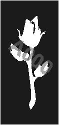 קעקוע ורד | קעקועי חינה | שבלונה דגם 189