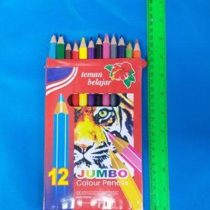 עפרונות צבעוניים עבים | עפרון צבעוני 12 יחידות איכותי