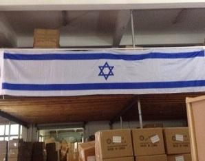 דגל ישראל | דגל לבניין | אורך 10 מטר